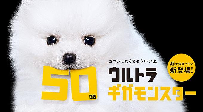 ウルトラギガモンスター 50GB