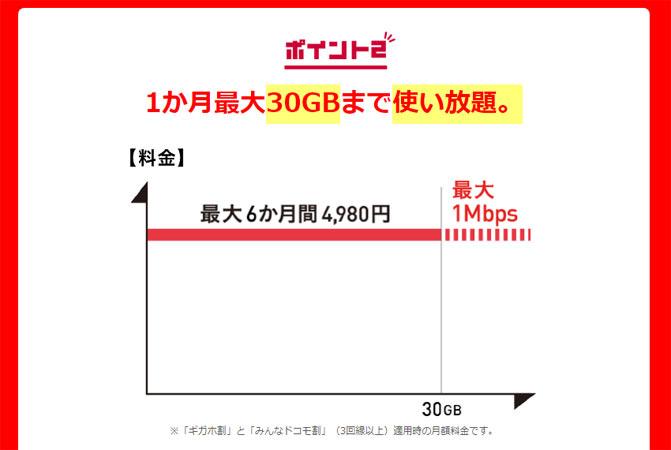 1か月最大30GBまで使い放題