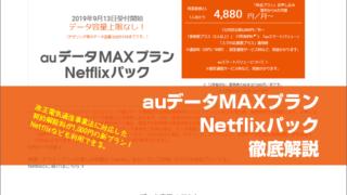 auデータMAXプランNetflixパック徹底解説