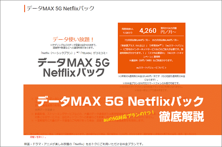 データMAX 5G Netflixパック 徹底解説
