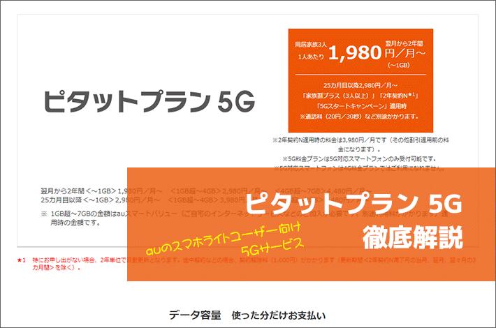 ピタットプラン 5G 徹底解説