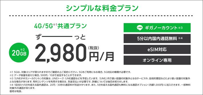 20GB 2,980円/月