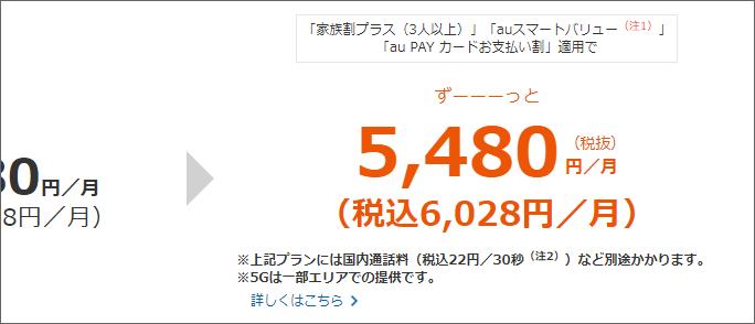 税込6,028円/月