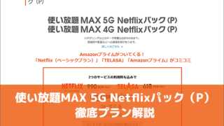 使い放題MAX 5G Netflixパック(P)徹底プラン解説